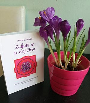 knjiga mandale 1